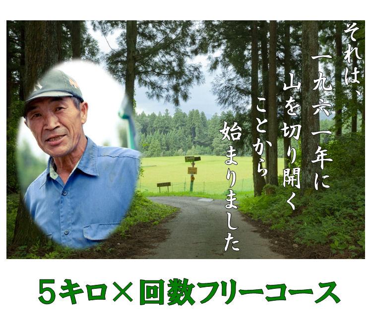 takimotomai-5f
