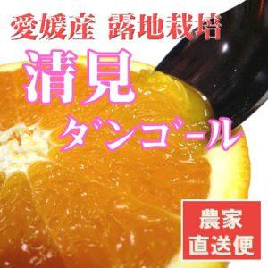 kiyomi-09