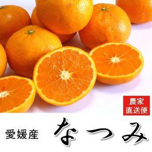 natsumi-5