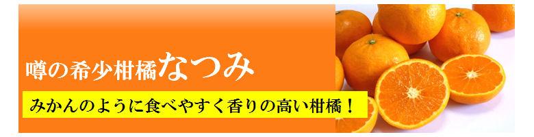natsumi-title