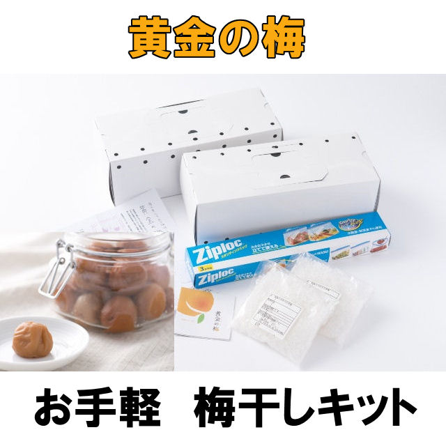 umeboshi-kit
