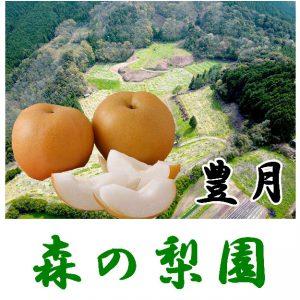 hougetsu-pop1