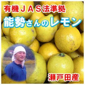 nose-ao-lemon-wake05