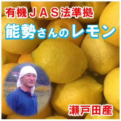 nose-ao-lemon10